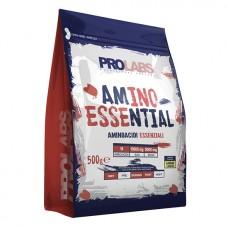 PL AMINO ESSENTIAL - 500g