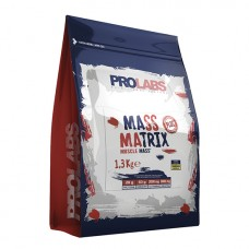 PL MASS MATRIX 1300g