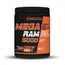 ES MEGA RAM 5000 300g