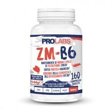 PL ZM-B6 160 tab